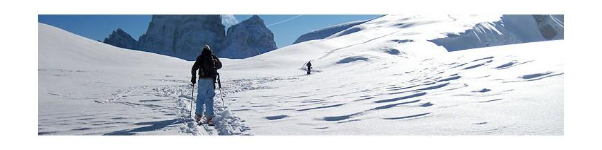 Alpine ski