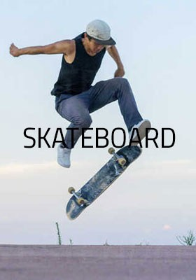 SKATEBOARD SHOP ON LINE